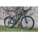 Harlekin 29er Carbon Racing Hardtail